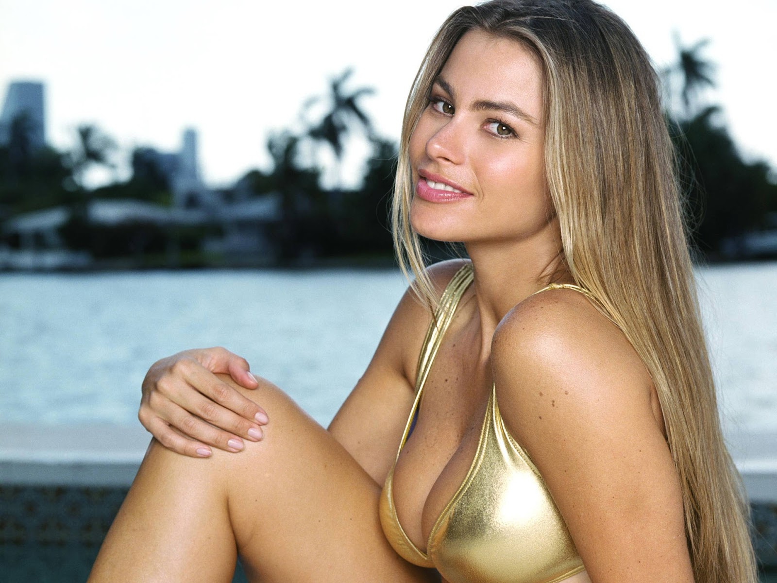 blonde hot sexy sofia vergara