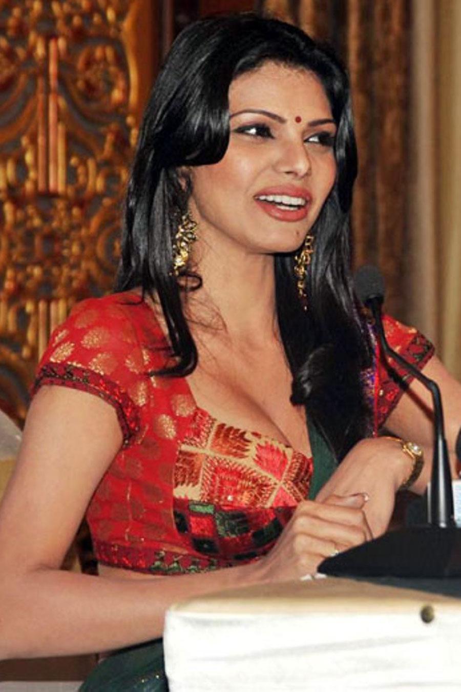 sherlyn chopra in saree unseen pics