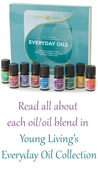 Learn All About the Oils in the Everyday Oil Collection!