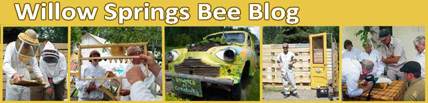 Willow Springs Bee Blog