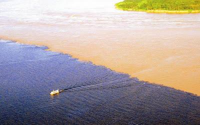 encontro das águas - Manaus