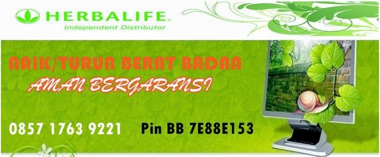 Konsultan Independent Distributor Herbalife