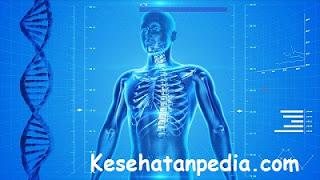 Cara Mengatasi Osteoarthritis Secara Alami