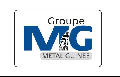 Métal Guinée