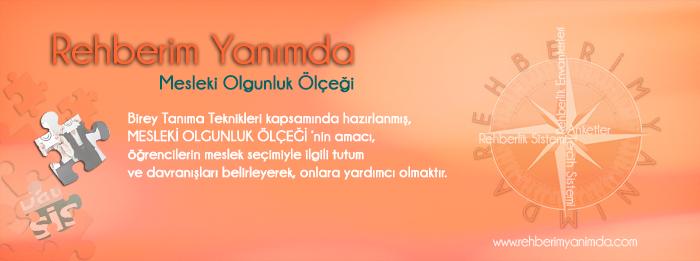 http://www.rehberimyanimda.com/mesleki-olgunluk-olcegi.aspx