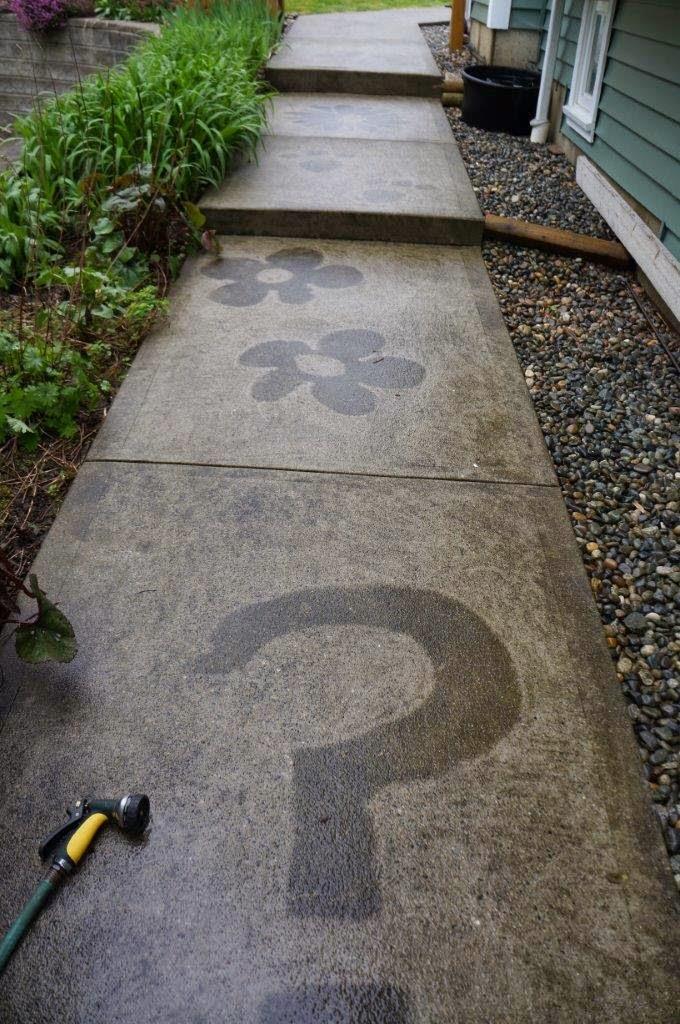 Sidewalk slime art exhibit - slime on concrete - design by pressure washing.