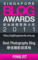 2011年,获取新加坡最佳摄影部落格十强