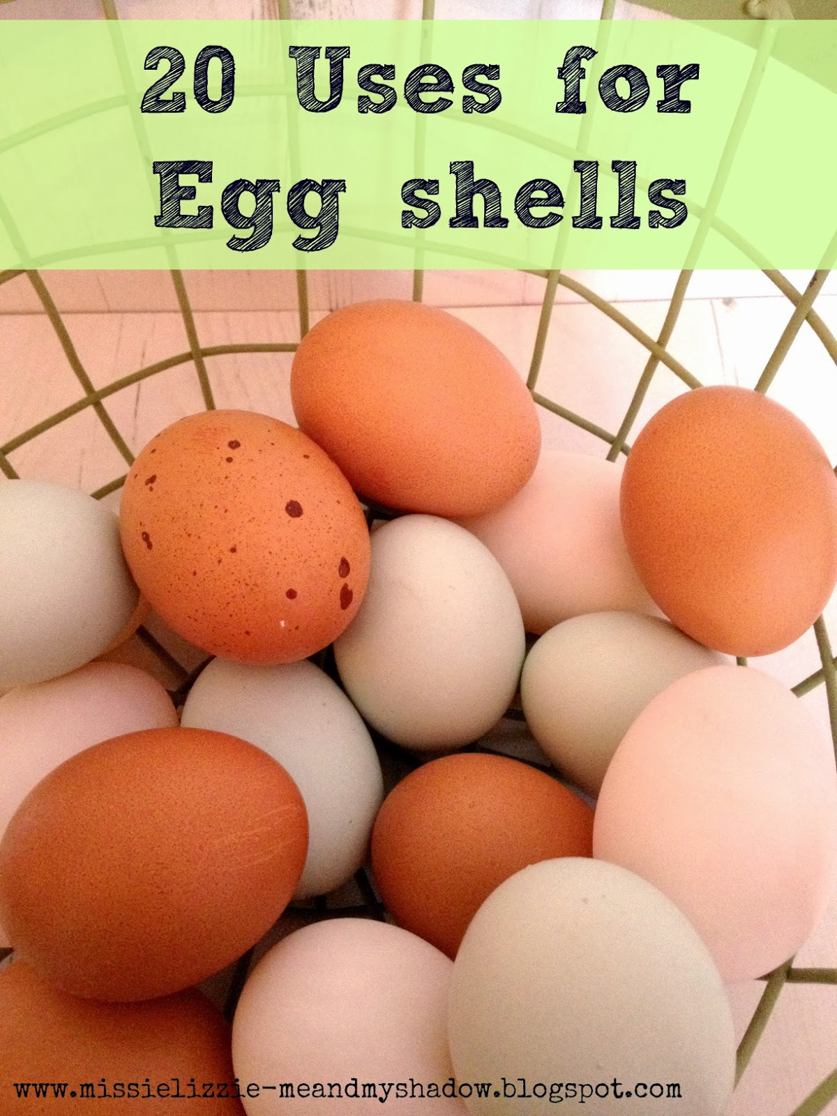 20 alternative uses for egg shells