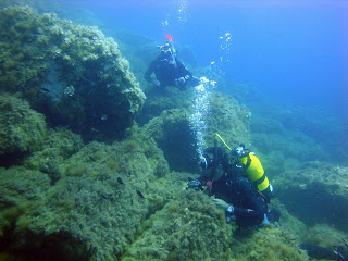 Scuba Plus buceo en Menorca - El dique 1