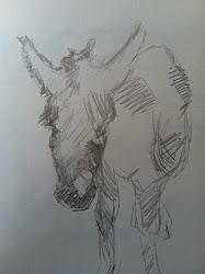 tragic donkey