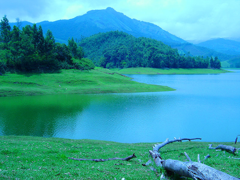 The Photographer Munnar Beautiful Place To Visit Your Holidays The God 39 S Own Country