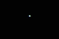 Die Venus...