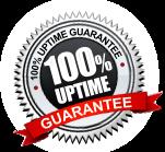 100% Server uptime