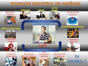 Las áreas de un ingeniero industrial