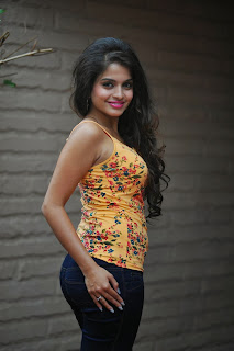 Actress Sheena Shahabadi Latest Picture Gallery in Jeans  0005.jpg