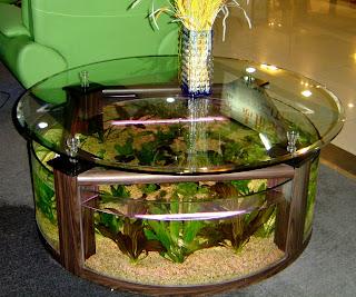 merawat+akuarium+bulat Tips Merawat Ikan di Akuarium