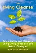 CLEANSING / DETOX
