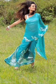 nikitha_narayana_hot_saree_stills_010.jpg