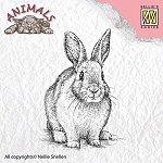 http://www.ebay.de/itm/Motivstempel-Clearstamp-Stempel-Rabbit-Haeschen-Hase-Ostern-Nellie-Snellen-ANI012-/201368174934?