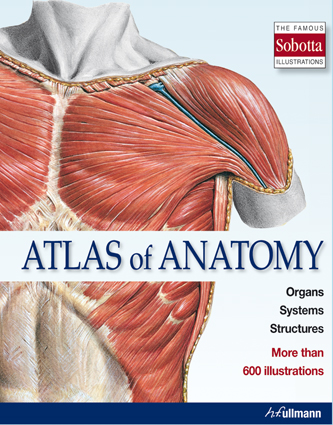 sobotta atlas of anatomy  pdf