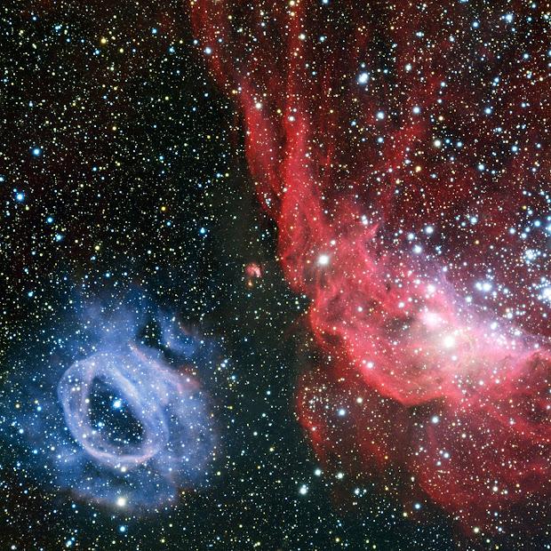 Nebulae NGC 2014 and NGC 2020