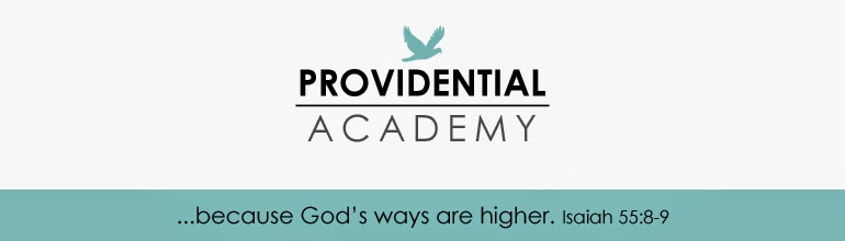 {Providential Academy}