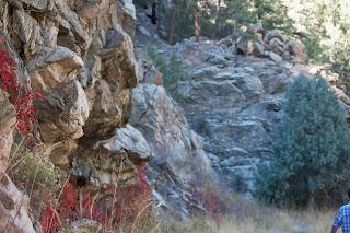 Realtor Colorado Springs | Colorado Springs Estate Real | 80906 | 80903 | http://www.benhomes.com