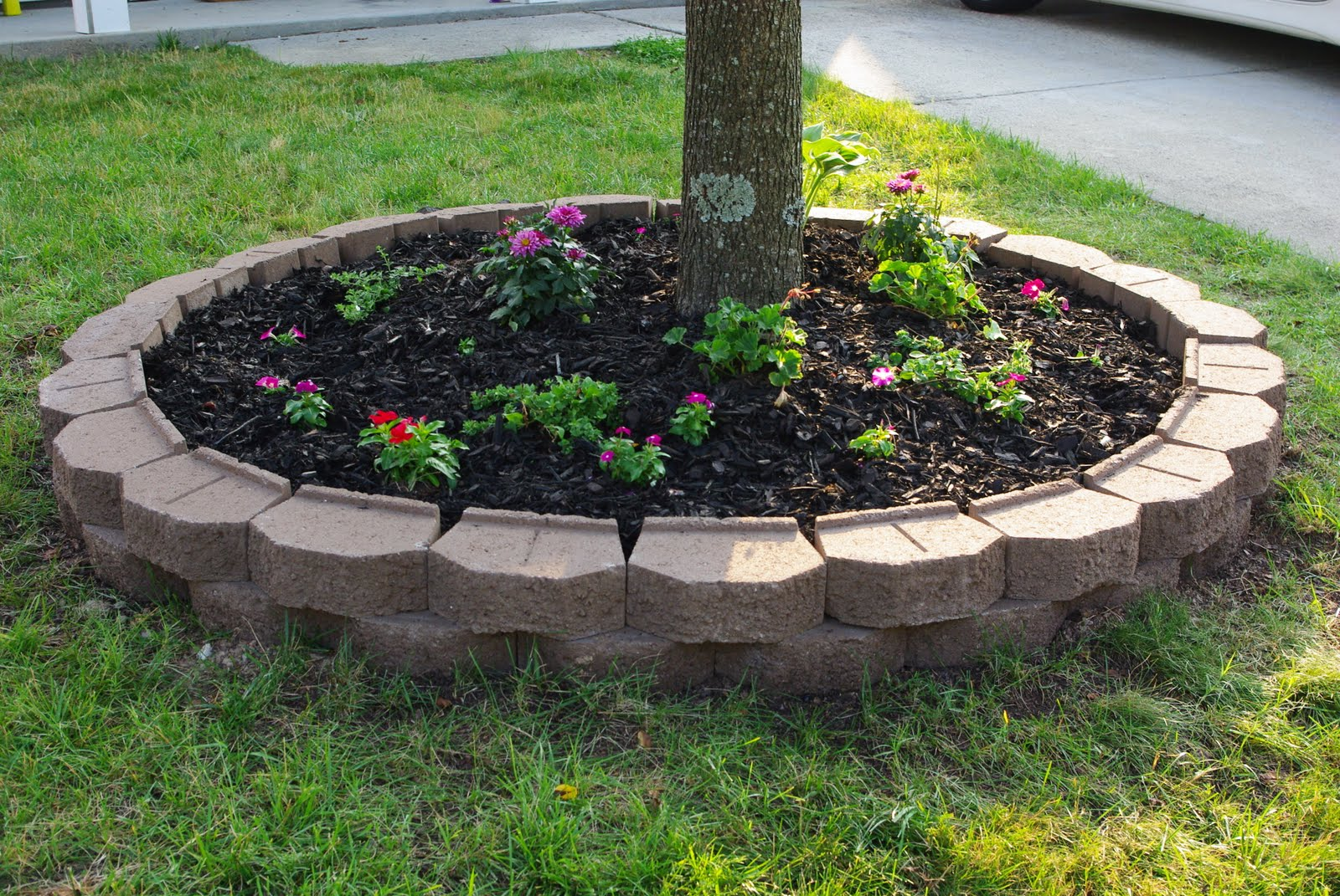 Tree Landscaping Ideas Front Yard Part - 34: Landscape Edging Design Ideas: Designs For Garden Flower Beds - Twiwa