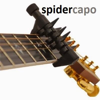 spider capo