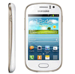 Samsung Galaxy Fame, Manual del Usuario, Instrucciones en PDF y Español