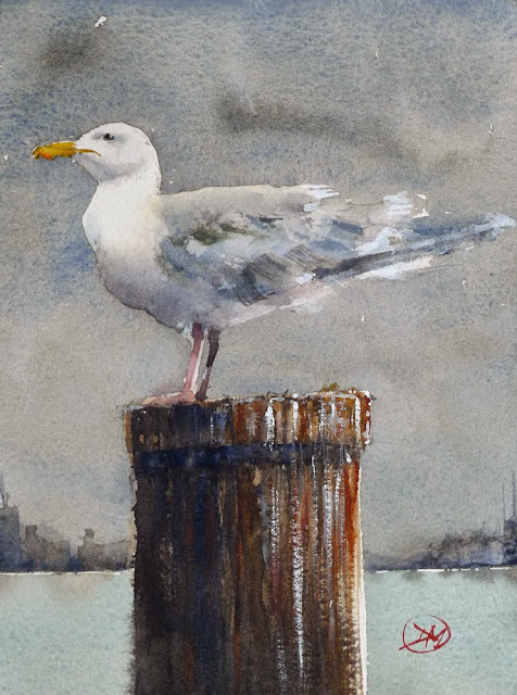 Seagull watercolour by David Meldrum