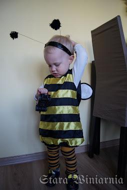 Strój bąka / pszczółki