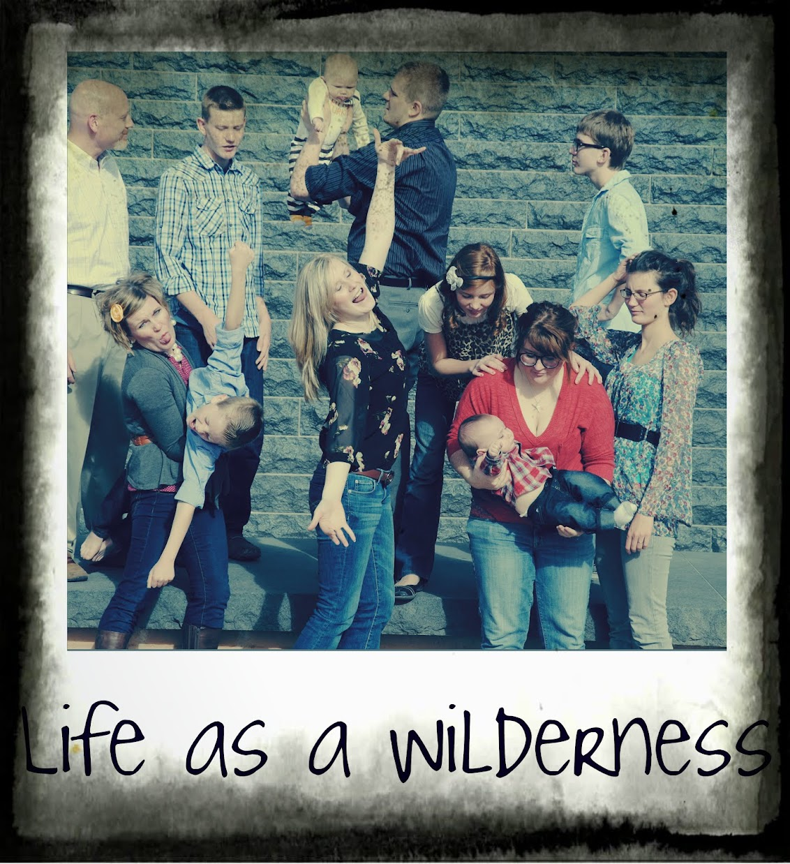 Life as a Wilderness