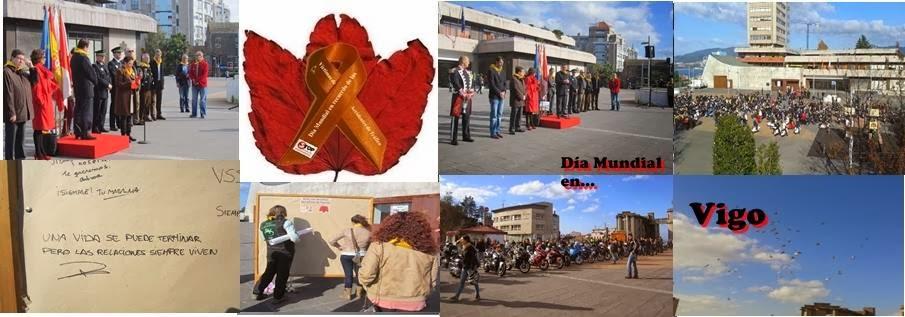 VIGO, DOMINGO 17 DE NOVIEMBRE 2013