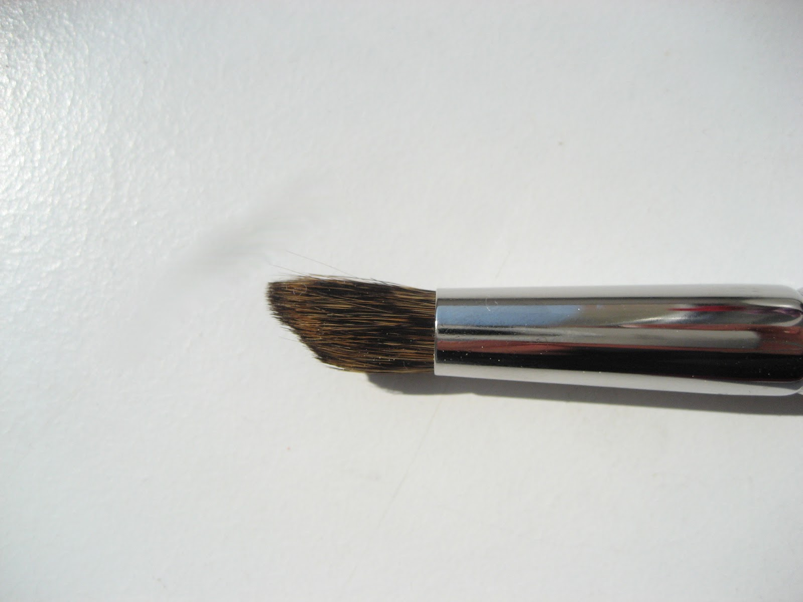 Are Hakuhodo Brushes Natural Hairs