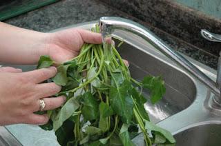 Mẹo rửa rau thật sạch và an toàn