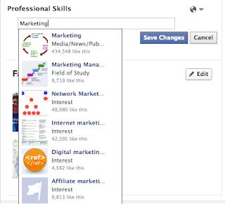 Guida Facebook Professione