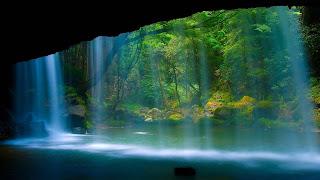 Wallpaper pemandangan gua di hutan