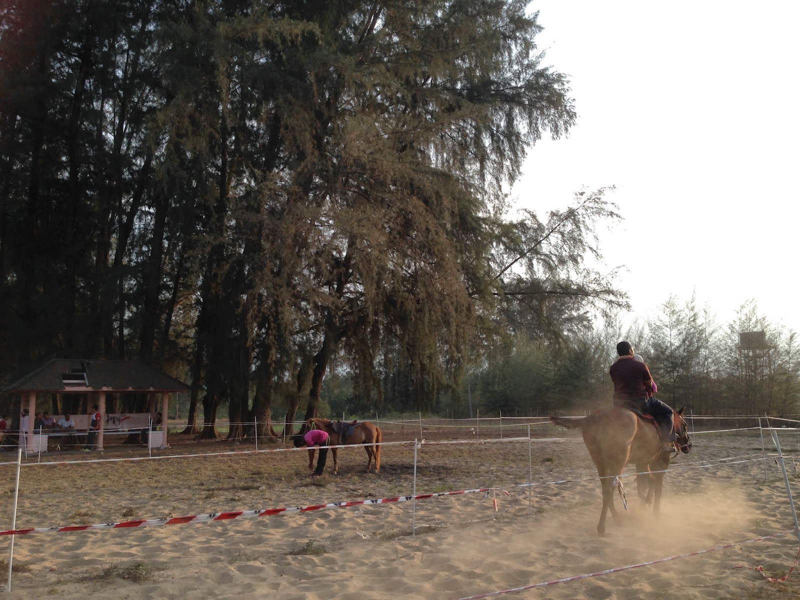 Horse riding at Pantai Sri Tujuh