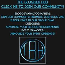The Blogger Hub