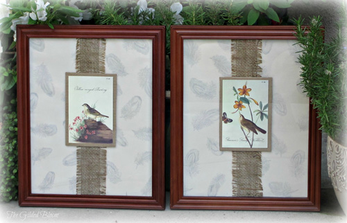 Creative Framing with Vintage Bird Prints   The Gilded Bloom