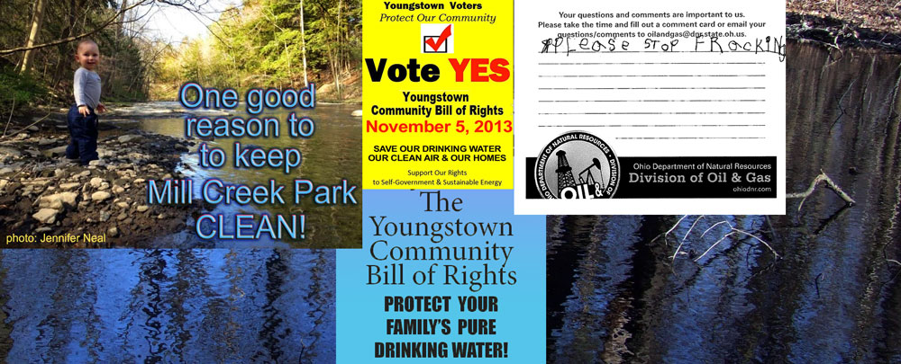 48 Reasons To Vote YES! Youngstown Community Bill of Rights-Vote YES on Nov 5