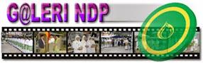 Galeri iNDP