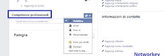 Professione Facebook
