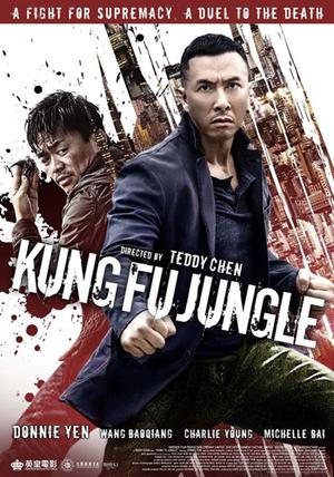 Asesino Kung Fu (2014) Dvdrip Latino [Acción]