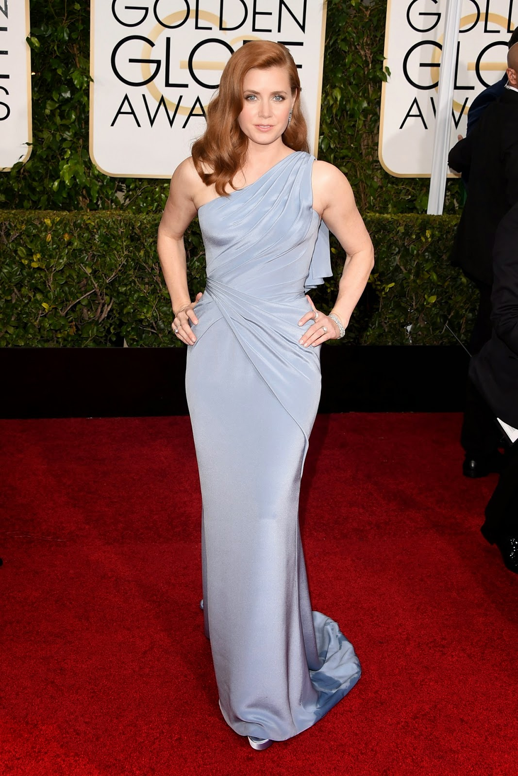 Amy Adams wore a Versace gown at the Golden Globe Awards 2015