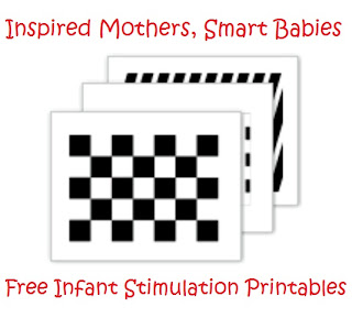 graphic regarding Printable Baby Flash Cards named Instruction My Babies: Absolutely free Baby Stimulation Flashcards