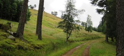 The path up Craig Vallich, near Ballater