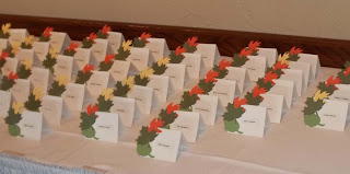 Wedding Place Cards - color coded by meal choice