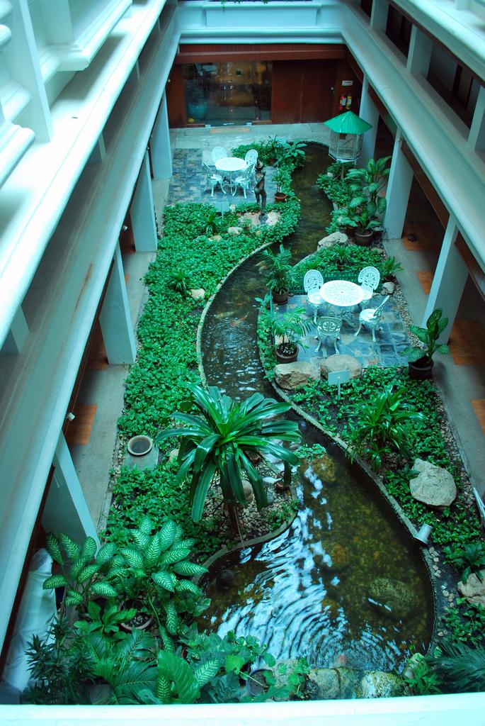 mme veine que landscape focused le blog carex par carolyn mullet paysagiste regorge de trsors et de dcouvertes carolyn mullet is garden designer - Garden Design By Carolyn Mullet